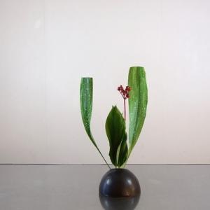 葉モノ2種で、花型の骨格を作る