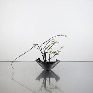 アオモジの枝を、小さな花器に