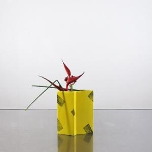 黄色い花器に、低くヘルコニアを