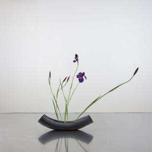 優雅に、華奢な茎だけど、自分をしっかり持っている花^^