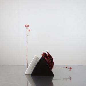 赤いクロトンと黒い花器、直角を作る