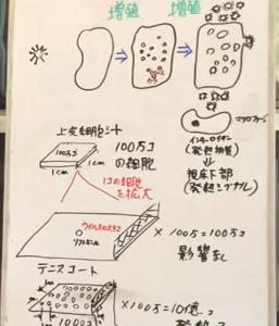 ウイルスの数を考えてみる/大橋眞氏 徳島大学