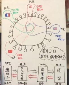 無意味なPCR検査は早くやめたほうが良い/大橋眞氏 徳島大学