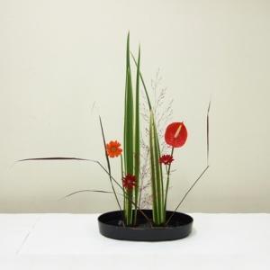 生徒さん 赤色の花材を集めて、ニューサイランを主にして