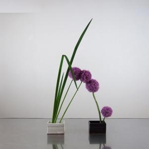 アリウムの花をつなぎ合わせてシンプルに挿す