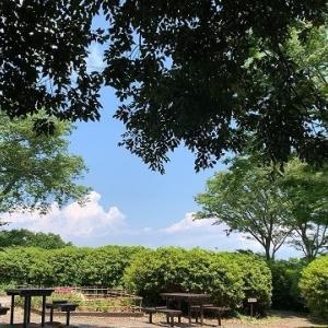 新緑の季節に素晴らしい景色!太田和つつじの丘