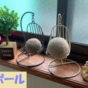 『ヴァージン柴毛』初の換毛ボールは直径5cm!