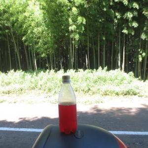 猛暑の作業:手作り赤紫蘇ジュースで生き返る!