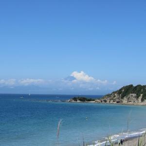 三浦半島の海も澄んでいてきれい~