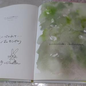 幸せな気持ちが溢れる絵本『あたたかい木』