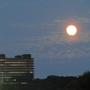満月に雲があってもOK!