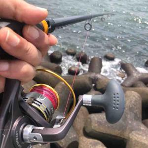2020 東京湾浦安のタコ釣り 今年は・・・