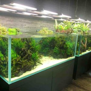 ADAの創設者 天野尚さんが手掛けた水族館へ