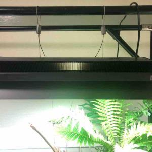 LEDの照明比較、GEXとADAの見た目の違い。