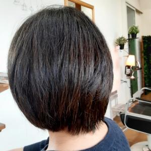 石井の仕事。その21 ヘナ染め歴2年の髪