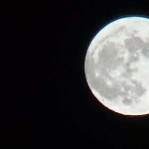 空を見上げれば幸せに♪Blue Moon♪