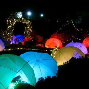 琵琶湖の夜景とイルミネーション✨