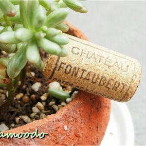 ワインのコルク栓を ガーデンピックに
