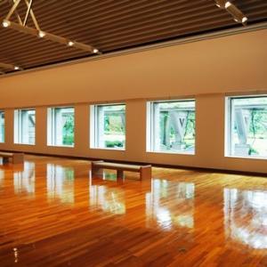 世田谷美術館の大胆な展示?…ということ
