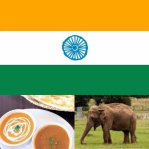 2256)インドに、投資???