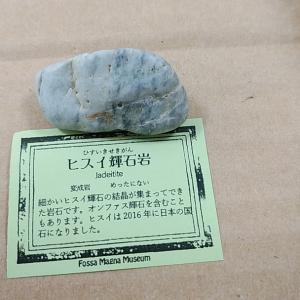 糸魚川 鉱物標本箱作り
