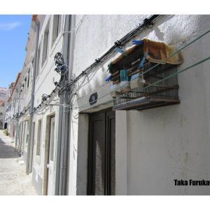 Portugal Pics ~Nostalgic Moments~