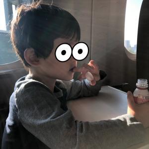 ママが招いた冤罪事件 in 京都
