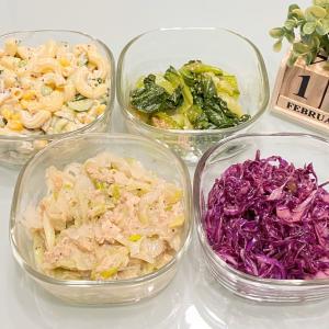 【作り置き】やみつき長ネギ/紫キャベツラペ/チンゲン菜のナムル/マカロニサラダ