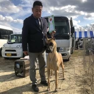FCI 九州インターナショナルドッグショー