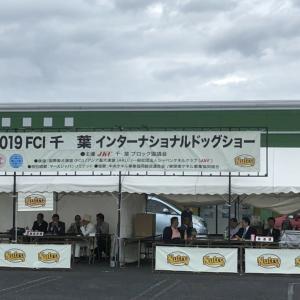 インターチャンピオン完成!!FCI千葉インターナショナルドッグショー