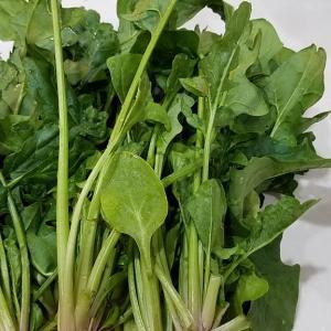 自家産野菜も使って今日の晩ごはん