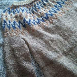 一冬一枚、手紡ぎ&手編みのセーター 前編