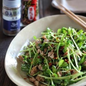 豆苗とひき肉の豆鼓花椒炒め