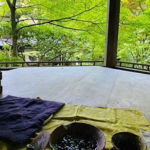 手作り茶で癒しのひと時過ごしました〜