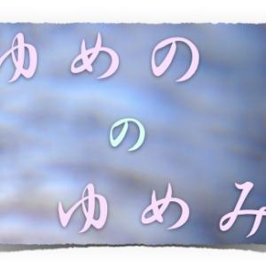 ゆめののゆめみ ゆめのぎもん 4