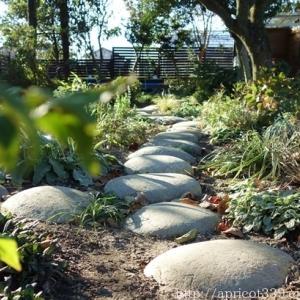 晩秋の庭しごと 低木と宿根草の植えつけ