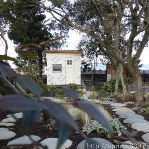 冬の庭しごと ガーデンシェッドの窓の取りつけ