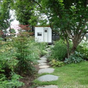 梅雨の庭しごと DIYでガーデンシェッドのウッドデッキ作り