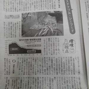 中日新聞さーん。