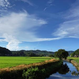 松江市鹿島町の風景