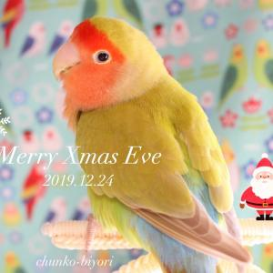 Merry Xmas & 良いお年を!