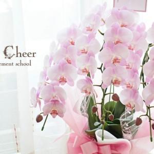 お誕生日のお祝いに胡蝶蘭の鉢花をお届け【フラワーアレンジメント教室 西宮】