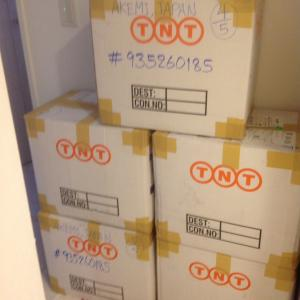 7/17~19開催!大阪近郊でワンピが大好きな皆様!約300枚入荷です♪心斎橋で販売します。