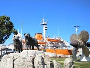 南極観測船しらせを見に ♪
