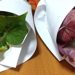 魔除け紫陽花とドクダミ