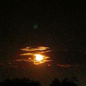 満月の夜はヨガ