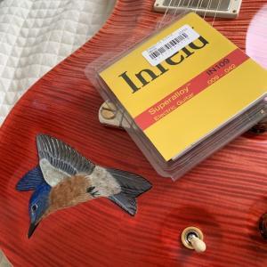 「エレキギター」 弦を試してみる ③