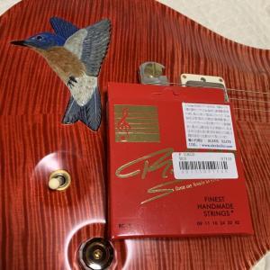 「エレキギター 」 弦を試してみる④