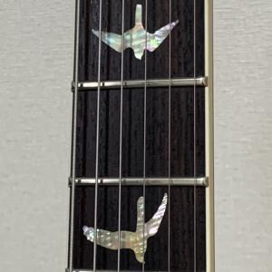 McCarty594の弦を042→046にしてみた。
