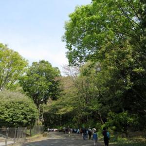 昭和記念公園 フラワーフェスティバル